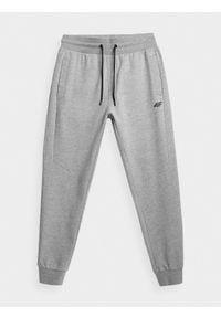 Szare spodnie dresowe 4f gładkie #1