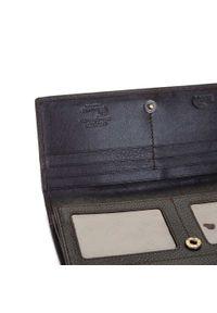 Wittchen - Damski portfel skórzany o prostym kroju. Kolor: brązowy. Materiał: skóra