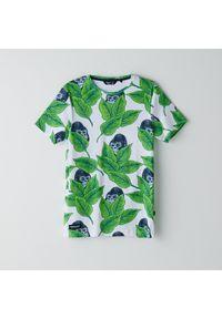 T-shirt Cropp z motywem zwierzęcym