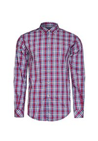 Niebieska koszula Napapijri button down, w kratkę