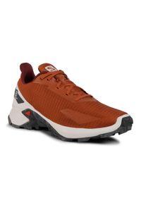 Brązowe buty do biegania salomon z cholewką