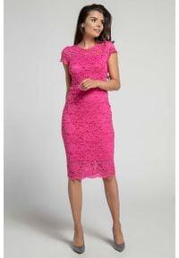 Nommo - Różowa Koronkowa Ołówkowa Sukienka Midi z Dekoltem V na Plecach. Kolor: różowy. Materiał: koronka. Typ sukienki: ołówkowe. Długość: midi