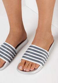 Born2be - Srebrne Klapki Sinanea. Okazja: na plażę. Nosek buta: okrągły. Kolor: srebrny. Materiał: jeans, guma. Sezon: lato. Obcas: na płaskiej podeszwie