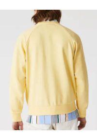 Lacoste - LACOSTE - Żółta bluza z haftowanym logo. Okazja: na co dzień. Kolor: niebieski. Materiał: bawełna, polar. Długość rękawa: raglanowy rękaw. Wzór: haft. Styl: casual