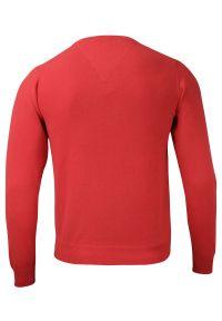 Pomarańczowy sweter Adriano Guinari z klasycznym kołnierzykiem, na co dzień, klasyczny