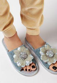 Born2be - Szare Kapcie Nemenlis. Okazja: na co dzień. Nosek buta: okrągły. Zapięcie: bez zapięcia. Kolor: szary. Materiał: materiał, guma. Wzór: kwiaty, aplikacja. Obcas: na płaskiej podeszwie. Styl: casual