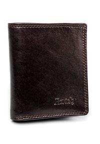 ROVICKY - Etui na karty brązowe Rovicky N1909-RVTK Brown. Kolor: brązowy. Materiał: skóra