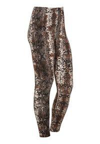 Cellbes Miękkie legginsy dżersejowe Czarny Nadruk skóry węża female czarny/ze wzorem 46/48. Kolor: czarny. Materiał: jersey, skóra. Wzór: nadruk #1