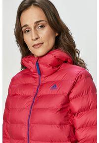 Różowa kurtka adidas Performance casualowa, z kapturem, na co dzień