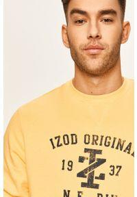 Żółta bluza nierozpinana Izod casualowa, bez kaptura, z nadrukiem, na co dzień