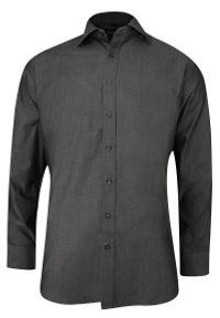 Chiao - Popielata Koszula Męska z Długim Rękawem, 100% Bawełna -CHIAO- Taliowana, Jednokolorowa. Okazja: do pracy, na spotkanie biznesowe. Kolor: szary. Materiał: bawełna. Długość rękawa: długi rękaw. Długość: długie. Wzór: aplikacja. Styl: biznesowy, elegancki #1