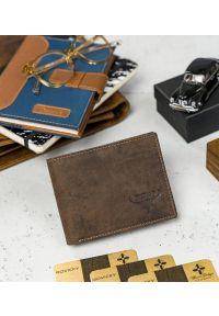 BUFFALO WILD - Skórzany portfel męski brązowy Buffalo Wild RM-02-HBW BROWN. Kolor: brązowy. Materiał: skóra