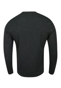 Brave Soul - Koszulka Popielata Longsleeve, T-shirt z Długim Rękawem, Męski, Jednokolorowy z Logo -BRAVE SOUL. Okazja: na co dzień. Kolor: szary. Materiał: bawełna, poliester. Długość rękawa: długi rękaw. Długość: długie. Wzór: aplikacja. Styl: casual