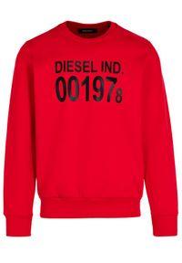 Diesel Bluza S-Girk-J3 00SDPY 0IAJH Czerwony Regular Fit. Kolor: czerwony