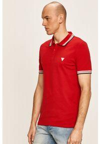 Czerwona koszulka polo Guess Jeans polo, krótka