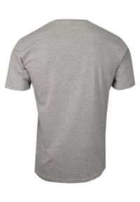 Pako Jeans - Szary Bawełniany T-Shirt -PAKO JEANS- Męski, Krótki Rękaw, Dekolt w Serek z Guzikami, BASIC. Okazja: na co dzień. Typ kołnierza: dekolt w serek. Kolor: szary. Materiał: bawełna. Długość rękawa: krótki rękaw. Długość: krótkie. Styl: casual