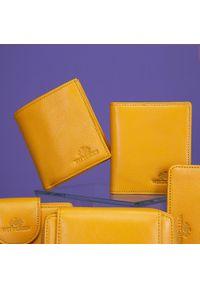 Wittchen - Etui na karty skórzane klasyczne. Kolor: żółty. Materiał: skóra