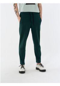 outhorn - Spodnie dresowe męskie. Materiał: dresówka