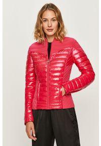 Różowa kurtka Guess Jeans bez kaptura