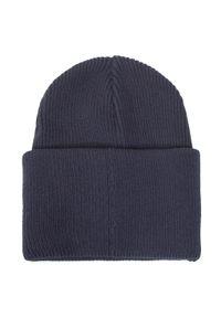Niebieska czapka zimowa Didriksons