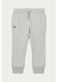 Szare spodnie dresowe Lacoste gładkie