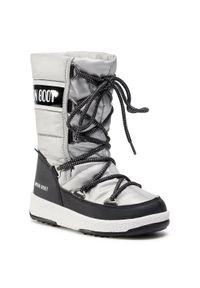 Srebrne buty zimowe Moon Boot
