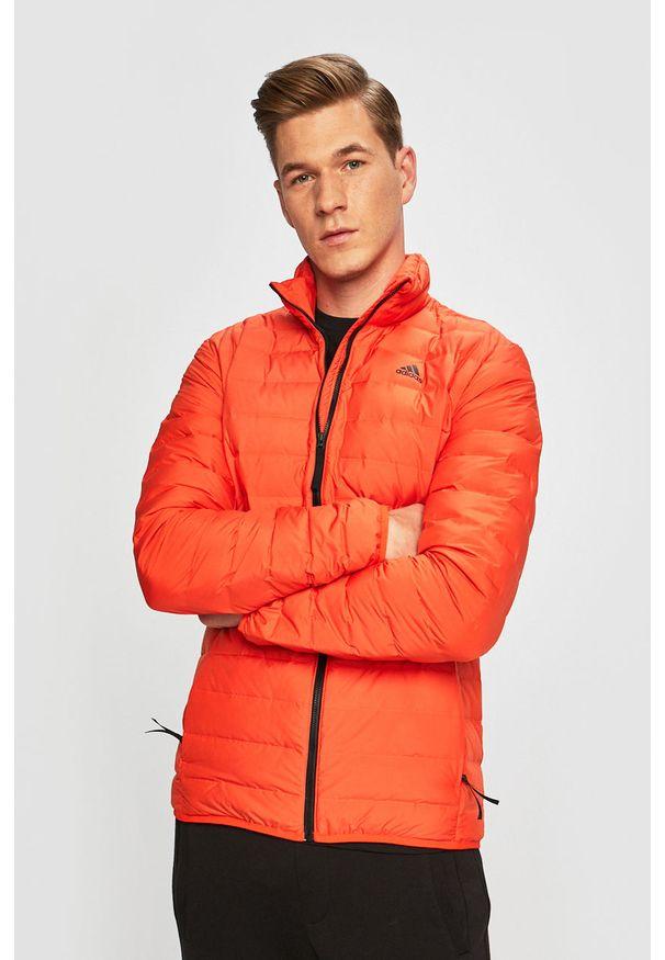 Pomarańczowa kurtka adidas Performance casualowa, na co dzień, bez kaptura