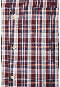 Fioletowa koszula Izod długa, button down, casualowa