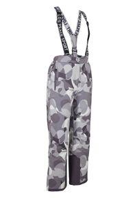 Spodnie narciarskie funkcyjne, długie bonprix Spodnie funkcyjn szar.dr. Kolor: szary. Materiał: elastan, materiał, poliester, poliamid. Długość: długie. Wzór: nadruk