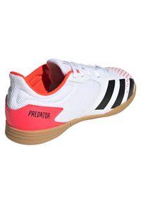 Adidas - Buty halowe dla dzieci adidas Predator 20.4 IN EG0930. Materiał: syntetyk. Szerokość cholewki: normalna. Sezon: lato. Sport: piłka nożna