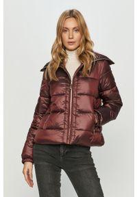 Fioletowa kurtka Trussardi Jeans klasyczna, na co dzień