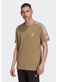 adidas Originals - T-shirt bawełniany. Okazja: na co dzień. Kolor: brązowy. Materiał: bawełna. Wzór: nadruk. Styl: casual