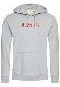 Levi's® Bluza Graphic 38479-0044 Szary Relaxed Fit. Kolor: szary