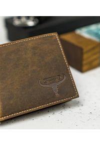 BUFFALO WILD - Skórzany portfel męski j. brązowy Buffalo Wild RM-05-HBW TAN. Kolor: brązowy. Materiał: skóra