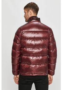 Fioletowa kurtka Karl Lagerfeld klasyczna, na co dzień, bez kaptura