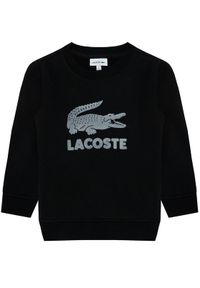 Czarna bluza Lacoste #3