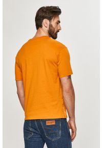 Brązowy t-shirt Scotch & Soda casualowy, z nadrukiem, na co dzień