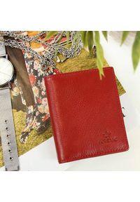 Krenig - Portfel skórzany damski KRENIG Classic 12050 czerwony w pudełku. Kolor: czerwony. Materiał: skóra