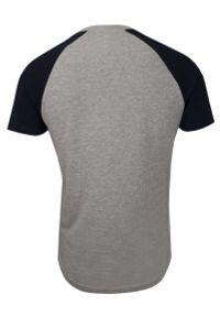 Szaro-Czarny Bawełniany T-Shirt Męski -Brave Soul- Koszulka, Krótki Rękaw, Logo. Okazja: na co dzień. Kolor: wielokolorowy, czarny, szary. Materiał: bawełna, wiskoza. Długość rękawa: krótki rękaw. Długość: krótkie. Wzór: napisy, nadruk. Sezon: lato, wiosna. Styl: casual