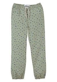 Spodnie chłopięce z gumką w talii bonprix zgniła zieleń. Kolor: zielony. Wzór: nadruk