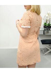 CRISTINAEFFE - Beżowa koronkowa sukienka. Kolor: beżowy. Materiał: koronka. Długość rękawa: krótki rękaw. Wzór: koronka. Typ sukienki: dopasowane. Styl: klasyczny
