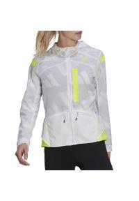 Adidas - adidas Marathon Translucent Jacket > GN2725. Typ kołnierza: kaptur. Materiał: materiał, poliester. Styl: klasyczny