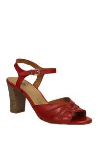 Czerwone sandały Caprice na lato, w kolorowe wzory