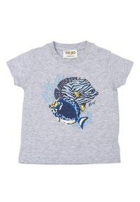 Kenzo kids - KENZO KIDS - Szara koszulka z grafiką 0-4 lat. Kolor: szary. Materiał: bawełna. Wzór: nadruk. Sezon: lato