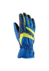 Rękawice Viking Kid Jr 120092250. Materiał: tkanina. Technologia: Thinsulate. Sezon: zima. Sport: narciarstwo