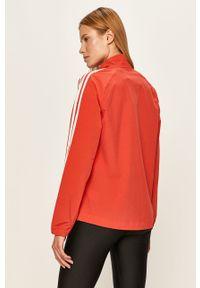 Pomarańczowa kurtka adidas Performance casualowa, na co dzień, bez kaptura, raglanowy rękaw