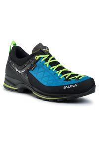 Salewa Trekkingi Ms Mnt Trainer 2 Gtx GORE-TEX 61356 Niebieski. Kolor: niebieski. Technologia: Gore-Tex. Sport: turystyka piesza