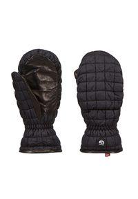 Rękawiczki sportowe Hestra narciarskie, z motywem zwierzęcym, Primaloft