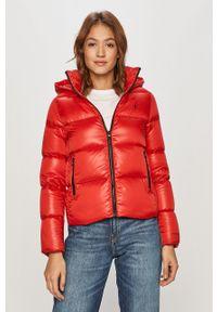 Czerwona kurtka Calvin Klein Jeans z kapturem