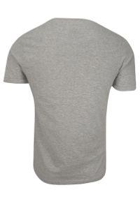 T-Shirt Szary Bawełniany Męski Bez Nadruku -Brave Soul- Koszulka, Krótki Rękaw, Basic. Okazja: na co dzień. Kolor: szary. Materiał: wiskoza, bawełna. Długość rękawa: krótki rękaw. Długość: krótkie. Sezon: wiosna, lato. Styl: casual